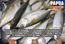 Sayur Mayur Diharapkan Bisa Tekan Inflasi Ikan Kembung
