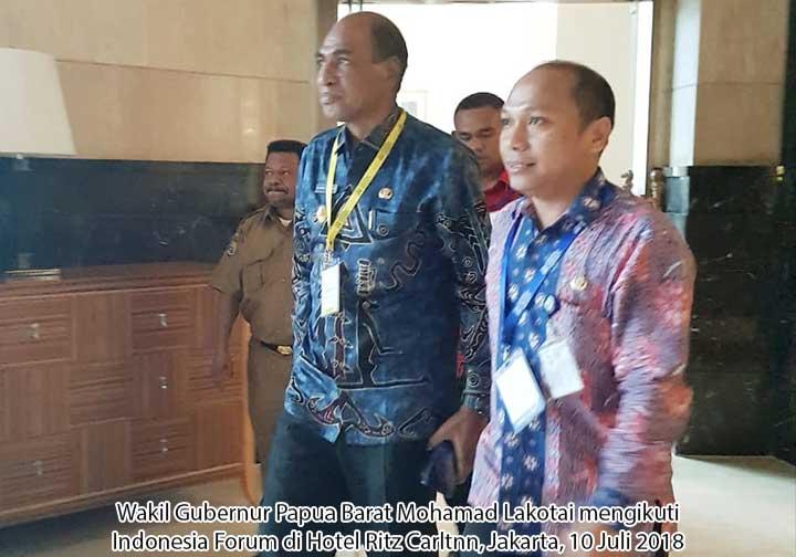 Wagub Lakotani Presentasi di Indonesia Development Forum