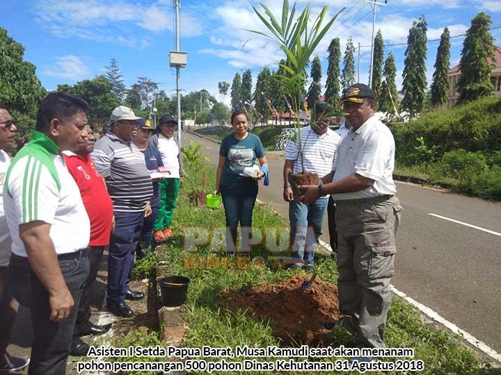 Dishut Tanam 500 Pohon Sepanjang Perkantoran Arfai