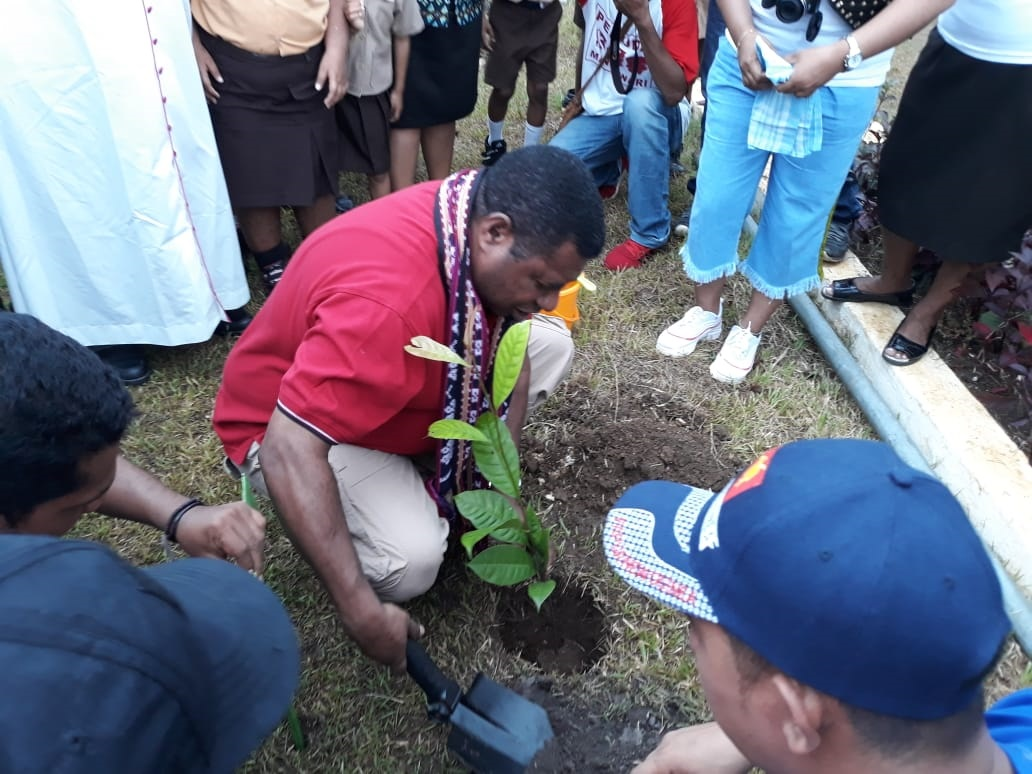 Pemuda Kei Tanam Ratusan Bibit Pohon di Manokwari