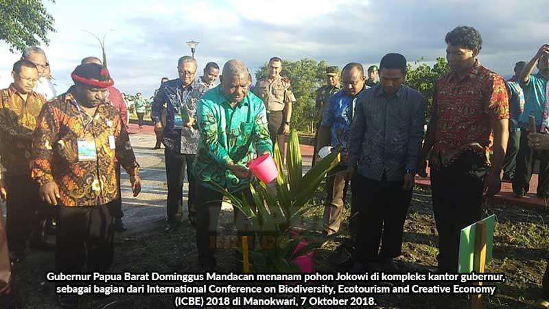 Gubernur Papua Barat Tanam Pohon Presiden Jokowi ICBE 2018