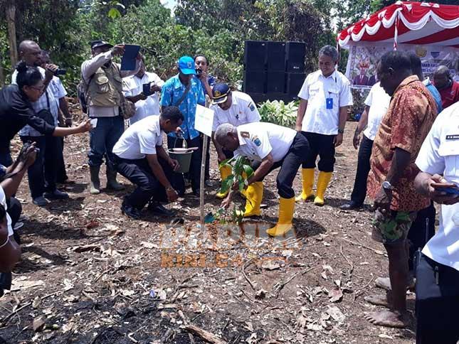 Papua Barat Genjot Kakao di Manokwari