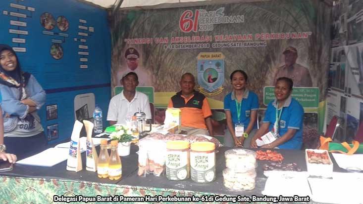 Gubernur Papua Barat Dapat Penghargaan Kementerian Pertanian