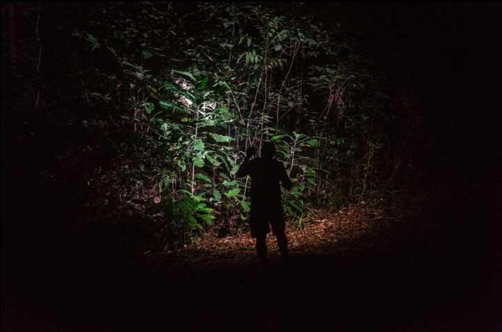 Foto Empat Fotografer Lokal Tuturkan Beribu Kata Soal Konservasi Lingkungan Papua Barat