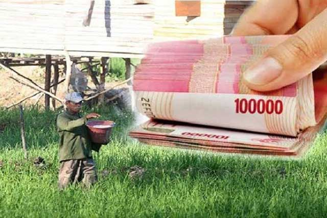 Dana Desa Tujuh Kabupaten Belum Cair, Kanwil Perbendaharaan Papua Barat Imbau Segera Urus