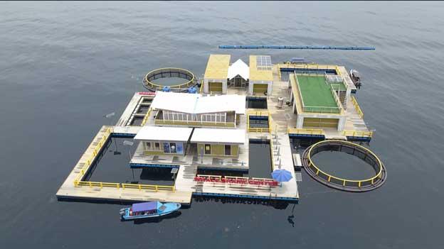 Nelayan Lokal Dilibatkan Untuk Buat Basis Data Terintegrasi Hiu Paus di Teluk Cenderawasih